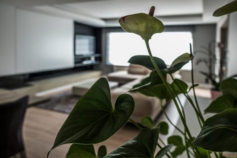 interieur - en kleuradvies op maat van de klant